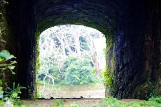 115_Shurijo Castle Park_05222013