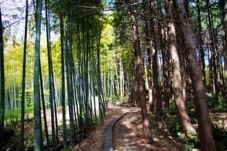 119_Inari Shrine_05022013