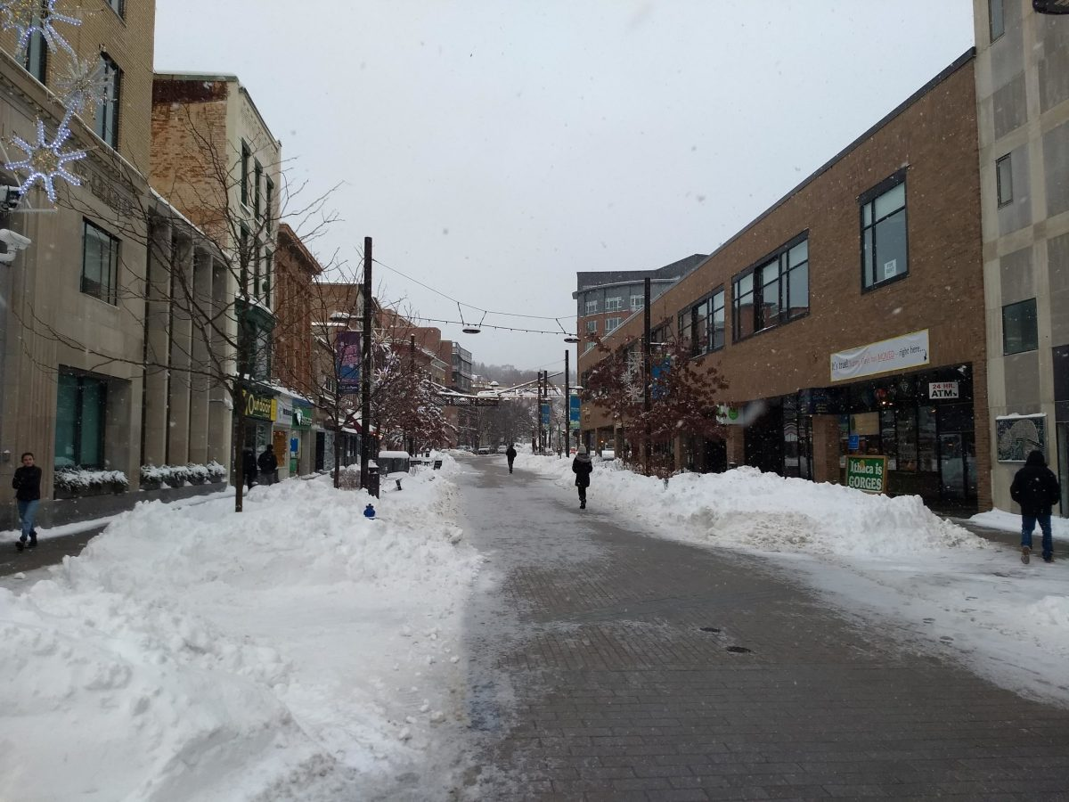 Snow on Ithaca Commons