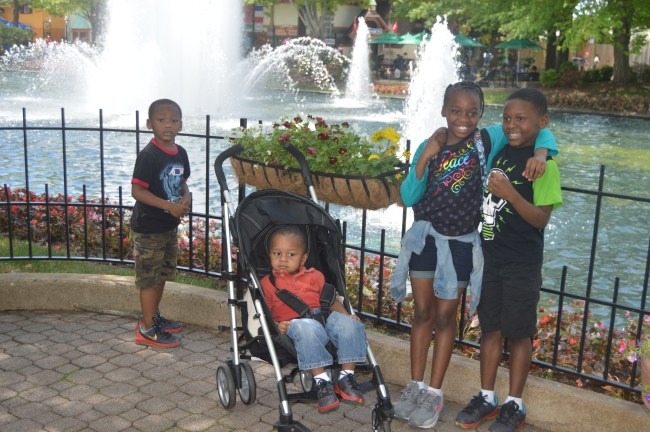 Kings Dominion Spring Bloom (11)