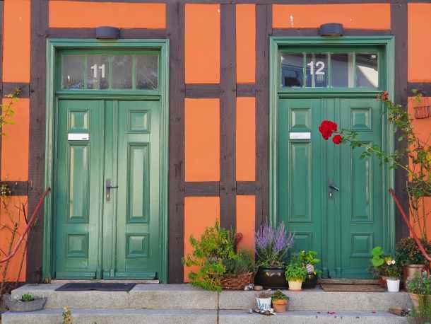 red wooden door with green plants