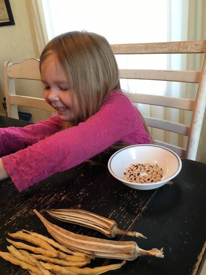 Saving seeds to plant next year demonstrates God's handiwork