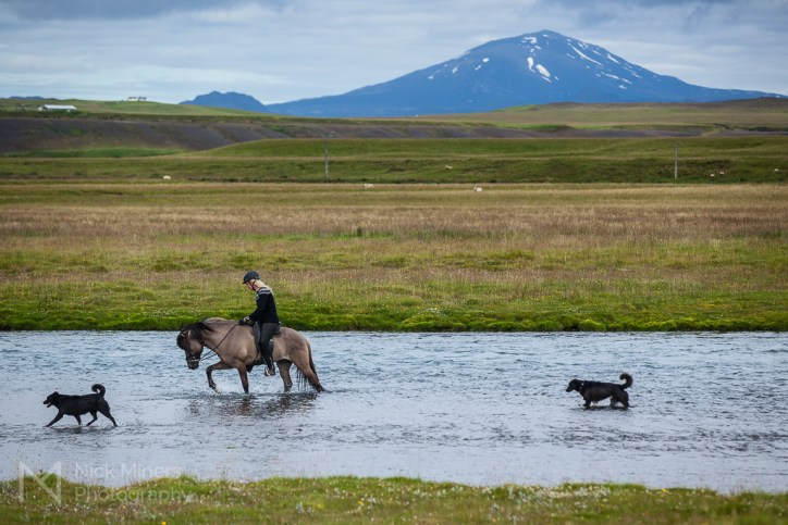Horse riding in the Rangá river with Hekla volcano in the background