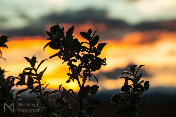 Sunset at Gullfoss