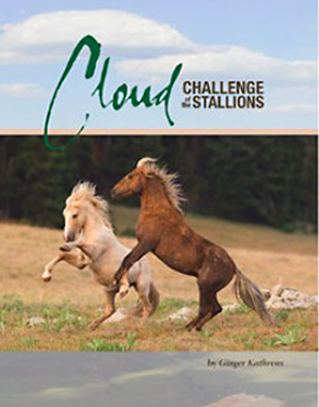 cloud_challenge_stallions book cover-2