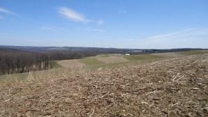 Ridges and Farms 4