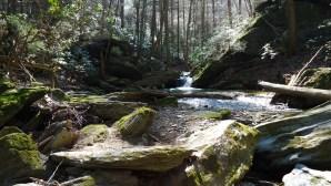 Mason Dixon Trail - March 29, 2011