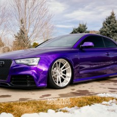 Grape Face – Terri's RS5
