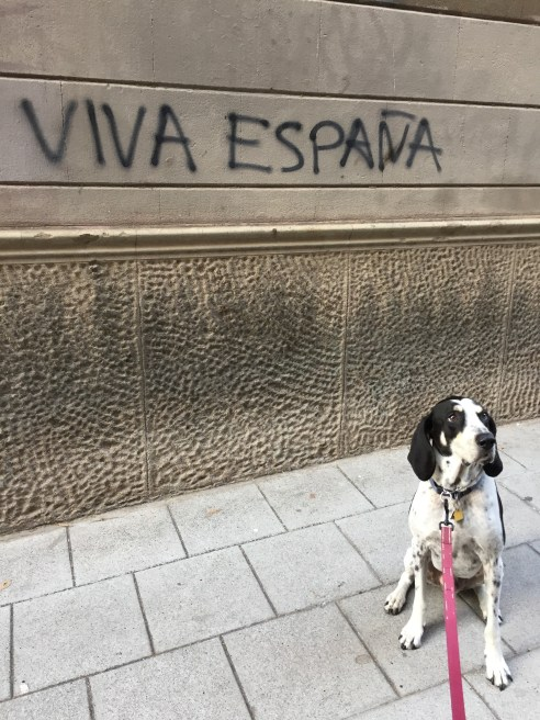 Viva Espana Walter