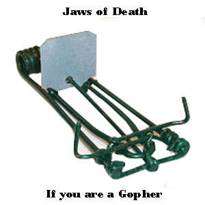 gopher trap