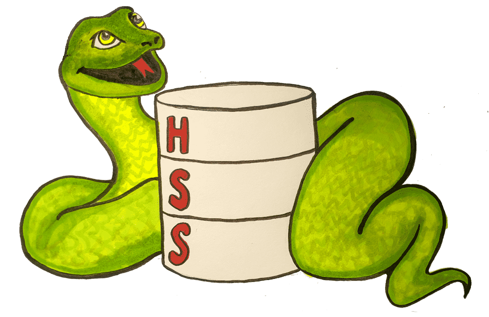 Python – Nick vs Networking