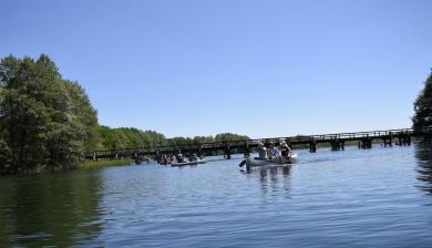 Brücke am Pagelsee