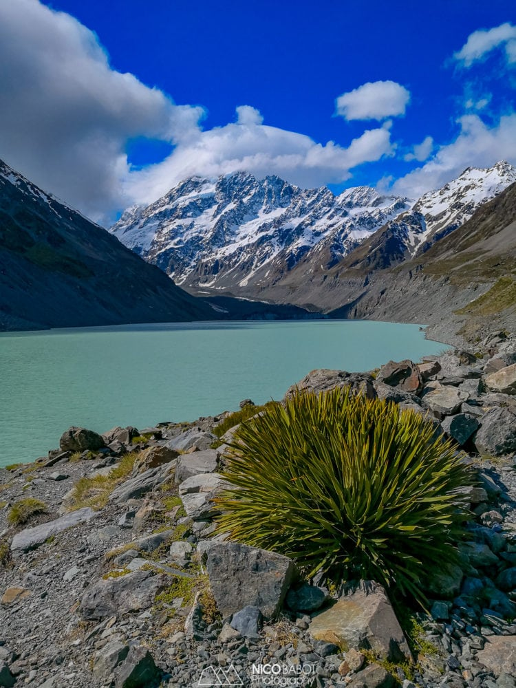 Guide Hooker Valley Track - Hooker lake view point Spear grass - Photo by Nico Babot