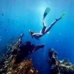 Snorkeling Tulamben Bali