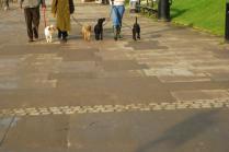 Street Life London 2