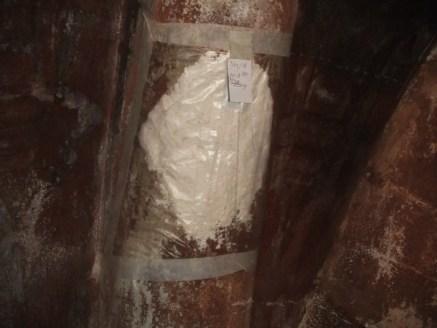 Impacco carb. di ammonio costolone