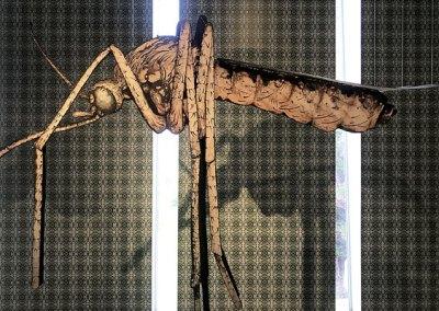 Giant Mosquito