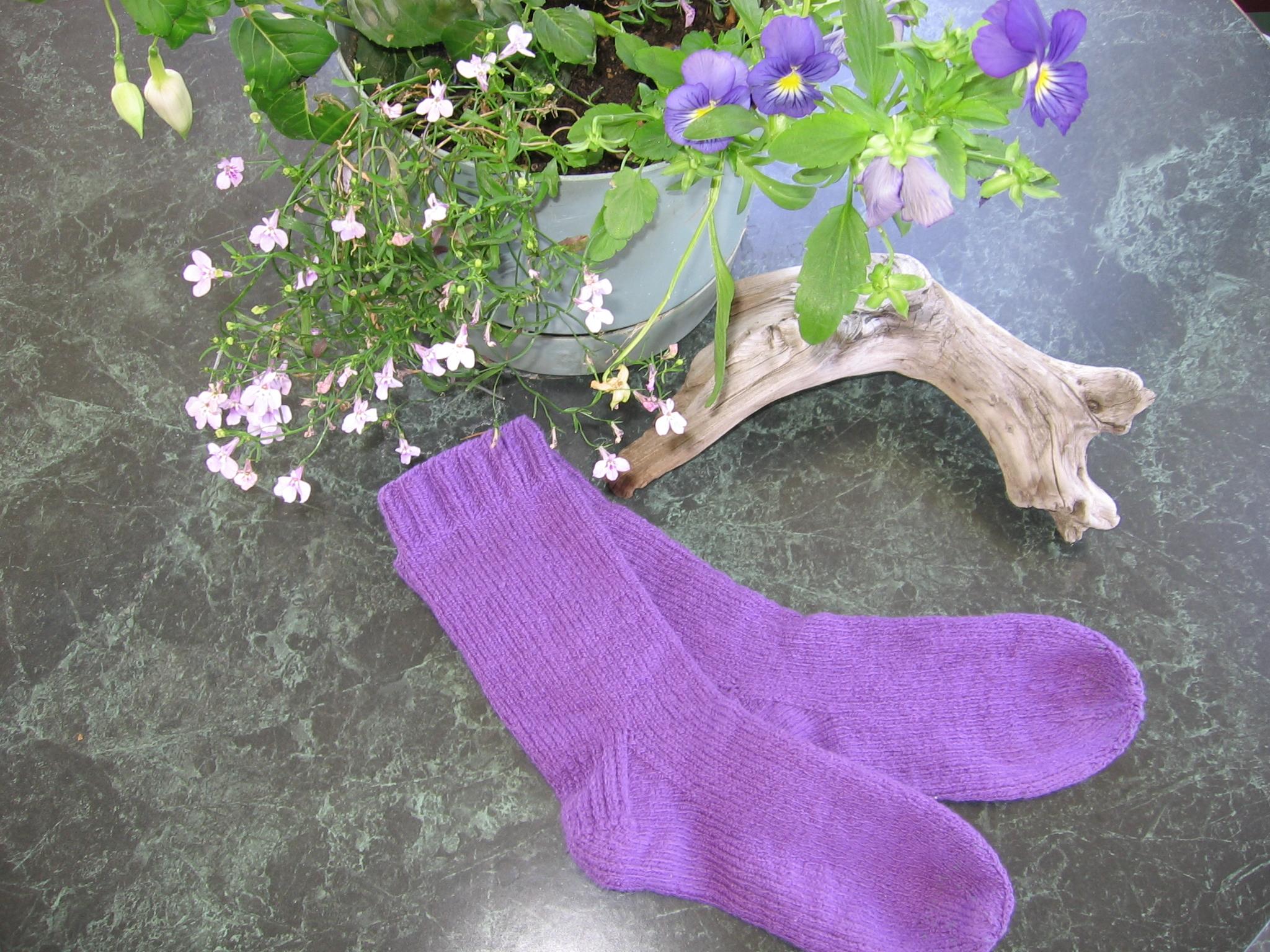 african violet socks