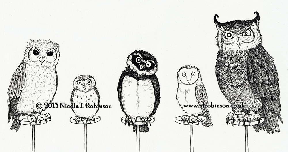 A Parliament of owls illustration © Nicola L Robinson all rights reserved www.nlrobinson.co.uk pen and ink