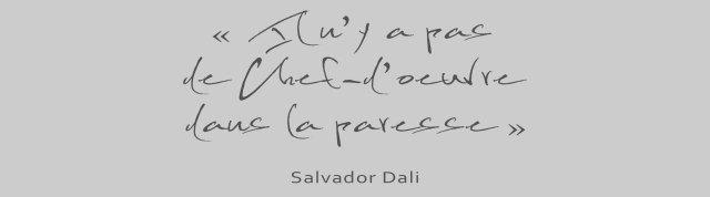 dalipnotique-1-nicolas-muyor-webdesigner-graphiste-lille-nord