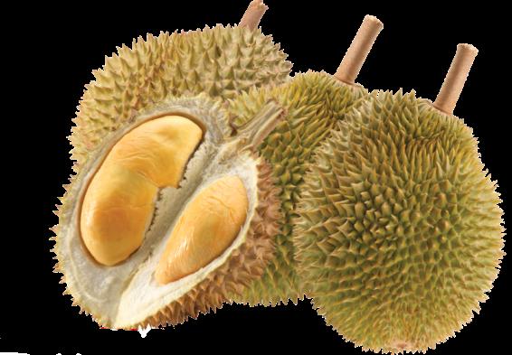 durianpix1