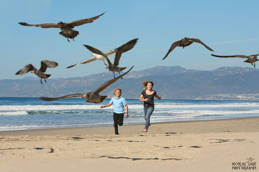 kids running with seagulls at the beach