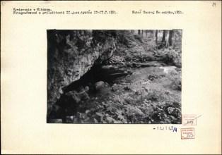 vyvieračka Hlbokô 1951