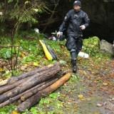 vytiahnute dreva z Hlbokeho
