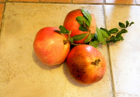 my take-away gift: fresh pomogranates