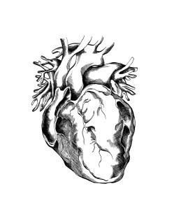 11x14_heart_resize