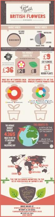 British-Flowers-infographic