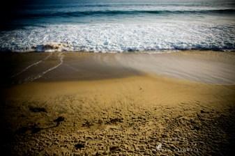 surf_and_sand_resort_robbins_bros_photo_by_nicole_caldwell_6134