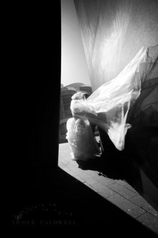 segerstrom_wedding_nicole_caldwell_studio_infrared