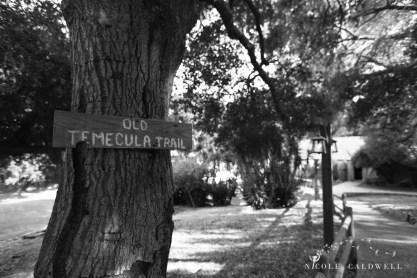 temecula creek inn weddings photo by Nicole Caldwell stonehouse 1155
