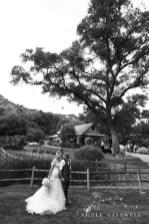 temecula creek inn weddings photo by Nicole Caldwell stonehouse 1183