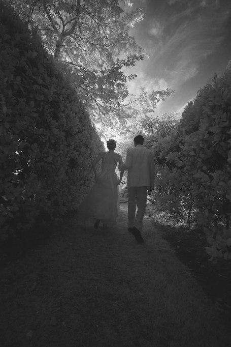blenheim-farms-pepper-tree-estate-wedding-nicole-caldwell-photo-42