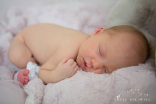 oarnge-county-photo-studio-newborn-photographer001