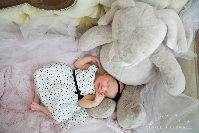 oarnge-county-photo-studio-newborn-photographer009