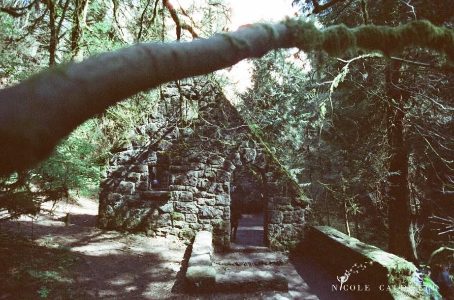 forest_park_oregon_house1