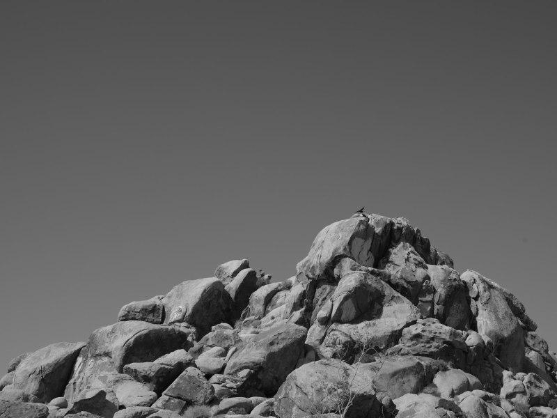 deadman's-point-california-pentax-645z-nicole-caldwell-05
