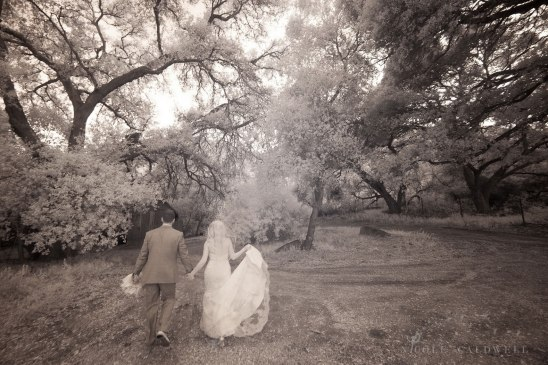 weddings-temecula-creek-inn-stonehouse-historical-venue-n-icole-caldwell-studio-98