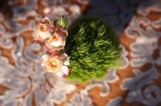 heartstone ranch weddings santa barbara capernteria nicole caldwell destination wedding photographer 22