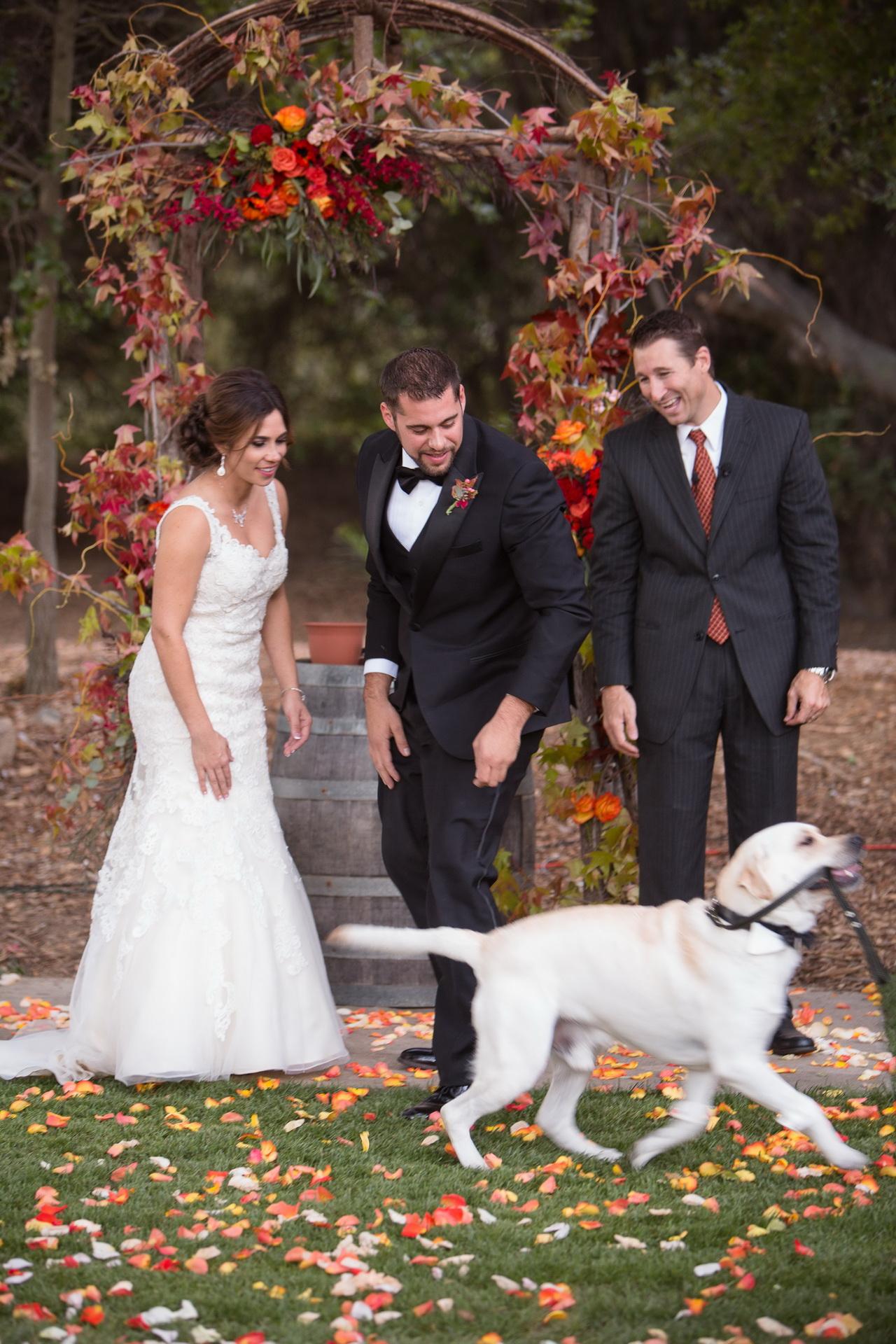 temecula creek inn weddings stonehouse by nicole caldwell photography studio 43