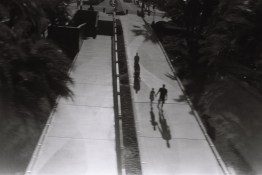 film photography amtrack san diego nicole caldwell 80