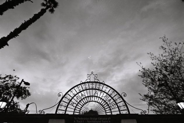 film photography amtrack san diego nicole caldwell 95