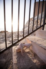 lagune beach weddings surf and sand resort by nicole caldwell 32