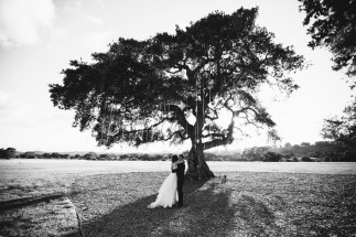 crossroads_estates_los_olivos_weddings_nicole_caldwell_for_eric_stoner_39