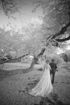 gardens of paradise weddings santa clarita nicole caldwell 1333