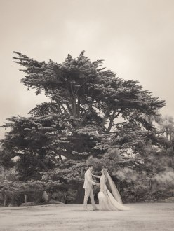 lauberege del mar wedding photographer infrared photo of couple in front of tree