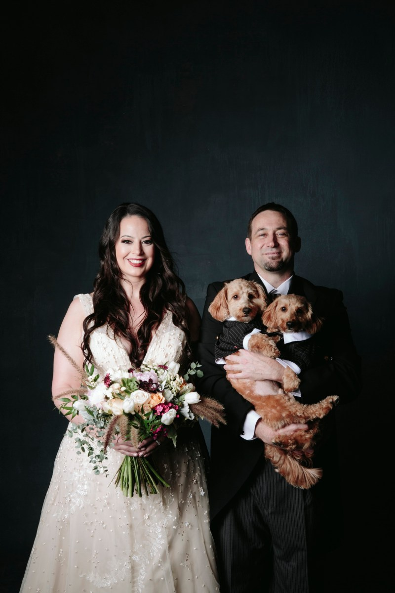 engagfementphotos in the studio with dogs nicole caldwell